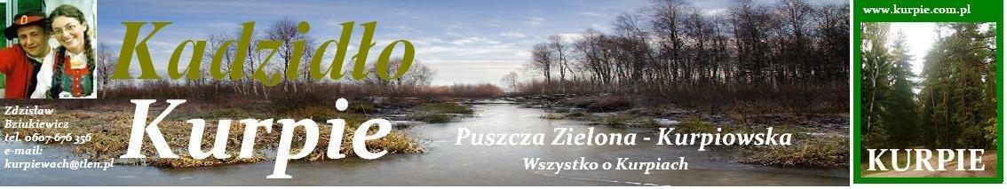 Kadzidło i Gmina adzidło Kurpie Kurpiowska Puszcz Zielona